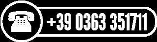 +39 0363 351711